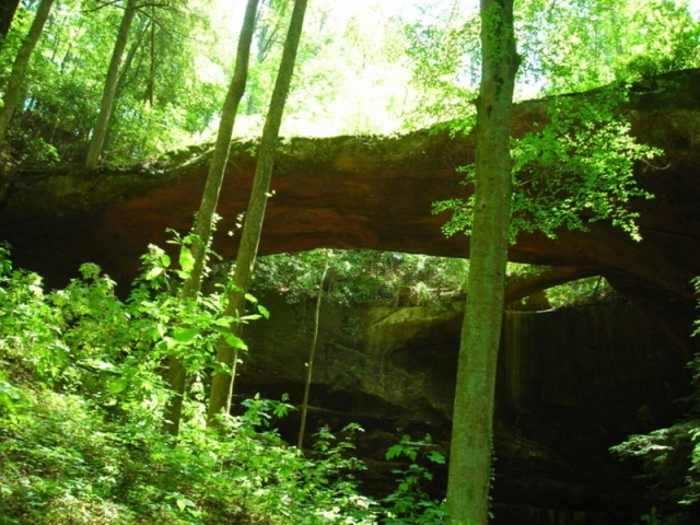 natural bridge - natural bridge alabama